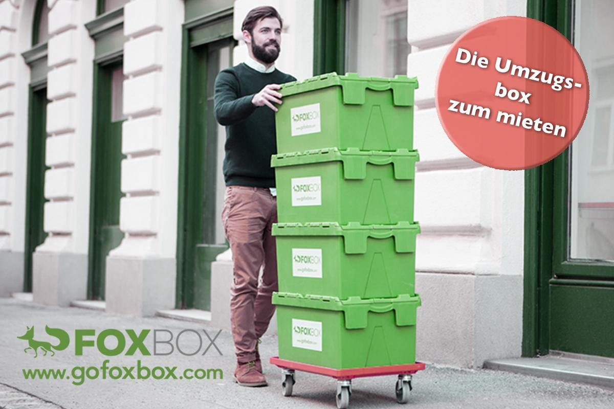 gofoxbox